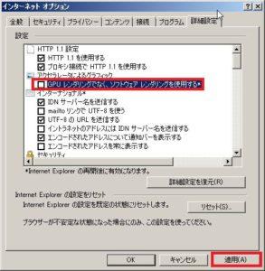 IEオプション詳細タブ